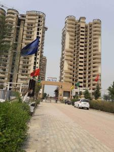 Gallery Cover Image of 1340 Sq.ft 3 BHK Apartment for rent in Noida Extension for 13000