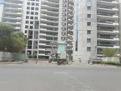 Gallery Cover Image of 3300 Sq.ft 3 BHK Apartment for rent in Sector 43 for 75000