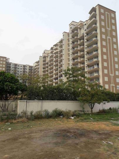 Building Image of 1550 Sq.ft 3 BHK Apartment for buy in Tulip Petals, Sector 89 for 6200000