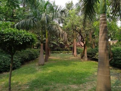 Parks Image of 0 - 850 Sq.ft 2 BHK Apartment for buy in CGHS Aman Apartments