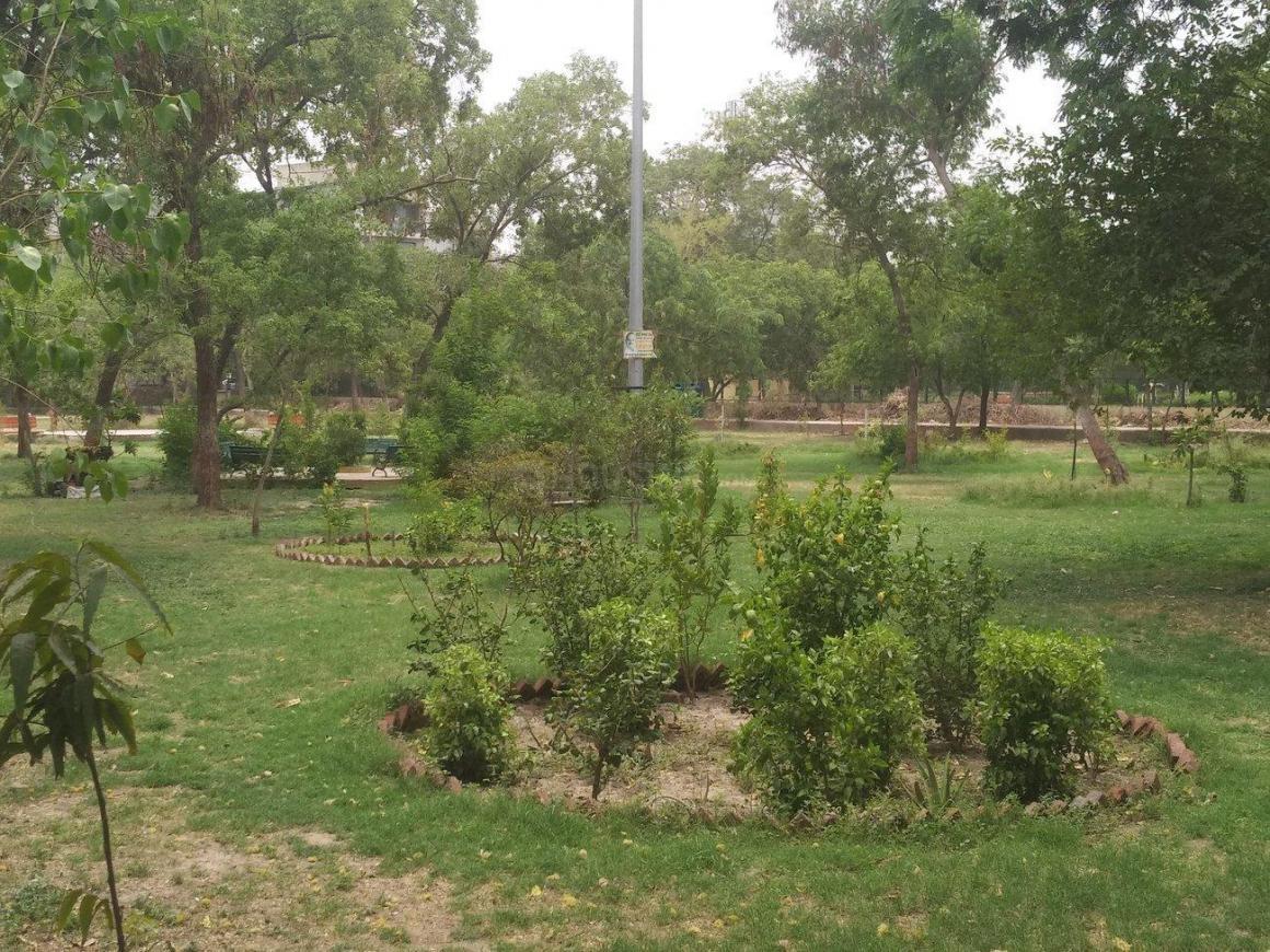Maharshi Dayanand Park