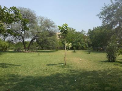 Parks Image of 118.4 - 204.51 Sq.ft Shop Shop for buy in Shri Vinayaka Beta Plaza
