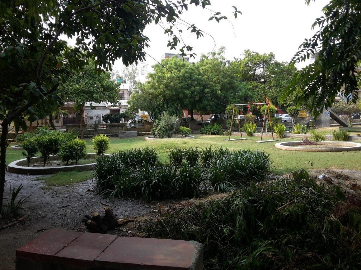 Naveen Park