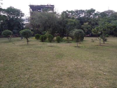 Parks Image of 1800.0 - 4500.0 Sq.ft 3 BHK Apartment for buy in GGR Floor 4