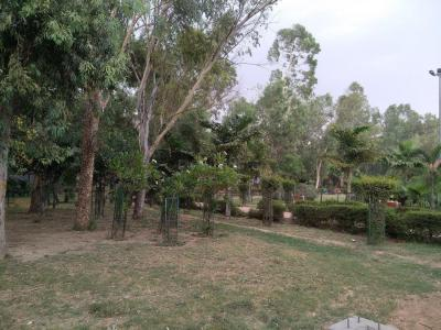 Parks Image of 0 - 1050.0 Sq.ft 3 BHK Independent Floor for buy in Bindra Floors - II