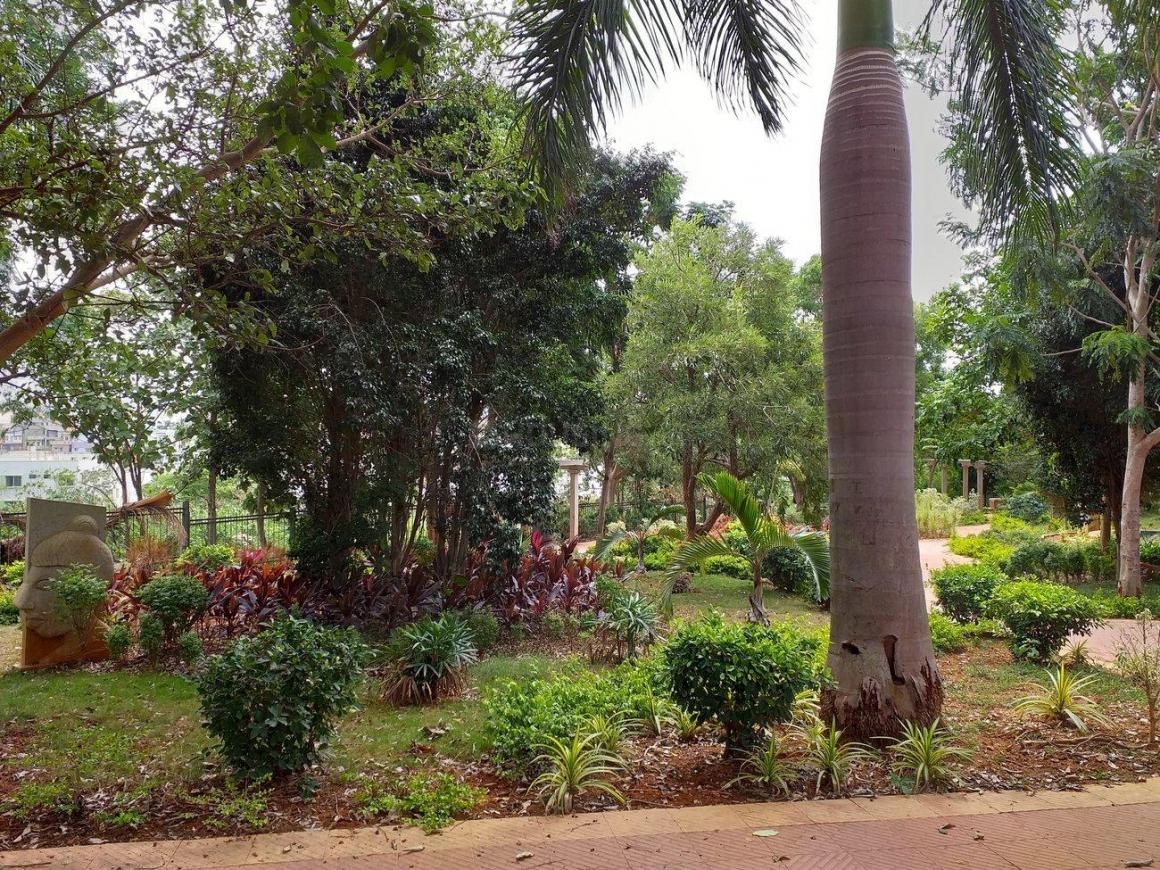Parks Image of  Sq.ft Residential Plot for buy in Bedarahalli for 7800000