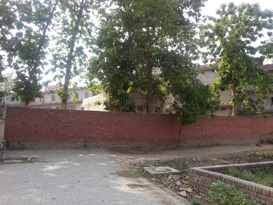 Campus School