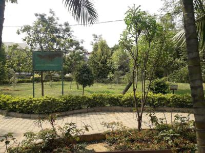 Parks Image of 700 Sq.ft 1 BHK Apartment for rent in Bennigana Halli for 9000
