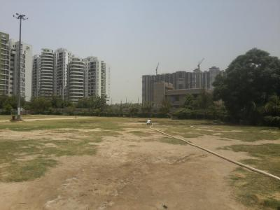 Parks Image of 1000 - 4665 Sq.ft 2 BHK Apartment for buy in Amrapali Platinum