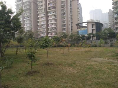 Parks Image of 930.0 - 1082.0 Sq.ft 2 BHK Apartment for buy in Supertech Crown Tower
