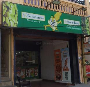 काविया सहाना में खरीदने के लिए 1056.0 - 1573.0 Sq.ft 2 BHK अपार्टमेंट शॉप्स  की तस्वीर