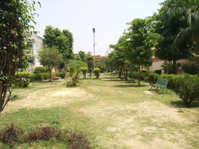 Parks Image of 2440 Sq.ft 3 BHK Independent House for buy in Sector 15A for 23500000