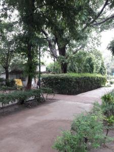 Parks Image of 0 - 1600.0 Sq.ft 3 BHK Independent Floor for buy in Sunrise Home - 1