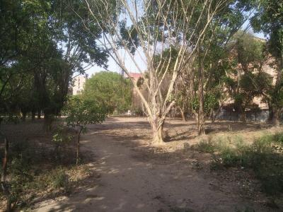 Parks Image of 2000 Sq.ft 3 BHK Apartment for rent in Sector 10 Dwarka for 37000