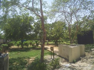 Parks Image of 2300 Sq.ft 4 BHK Apartment for rent in Sector 5 Dwarka for 30000