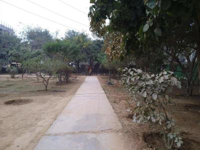 Parks Image of 0 - 3240 Sq.ft 3 BHK Independent Floor for buy in Iqra Floor - 5