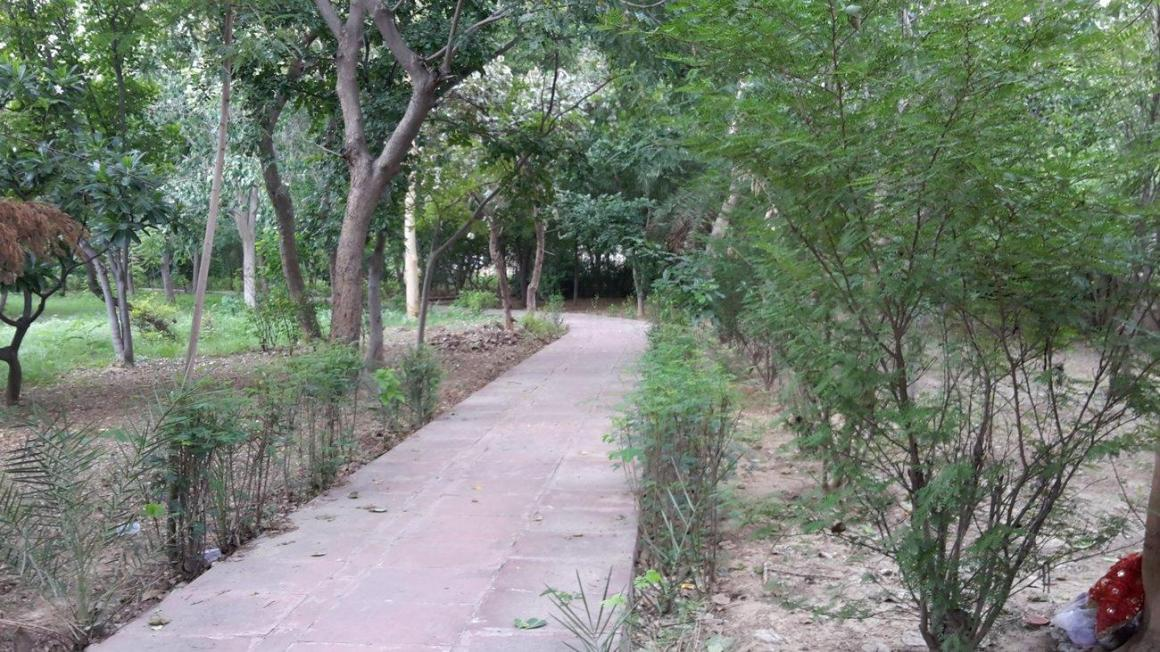 Parks Image of 650 Sq.ft 1 BHK Independent House for buy in Gamma I Greater Noida for 4500000