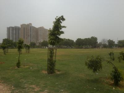 Parks Image of 529 - 1164 Sq.ft 1 BHK Apartment for buy in Stellar MI Citihomes