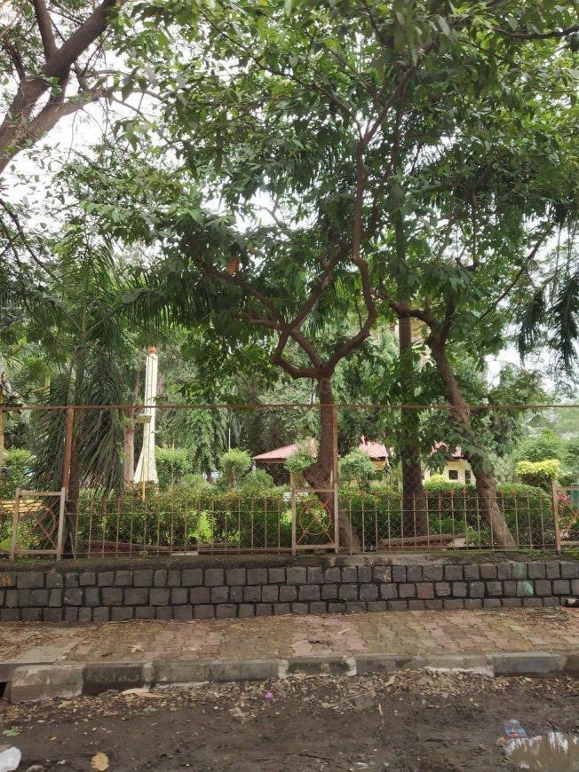 CIDCO Mango Garden