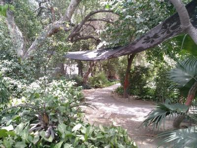 महारानी बाग  में 3599000  खरीदें  के लिए 3599000 Sq.ft 2 BHK इंडिपेंडेंट फ्लोर  के पार्क  की तस्वीर