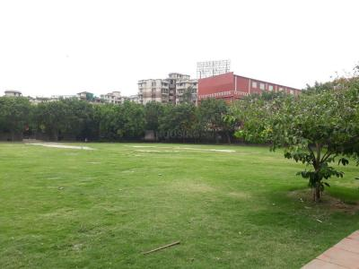 Parks Image of 1550 - 2800 Sq.ft 3 BHK Apartment for buy in Purvanchal Silver Estate