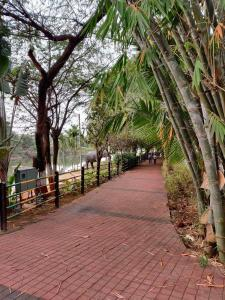 Parks Image of 750 Sq.ft 1 BHK Apartment for buy in Bopodi for 5500000