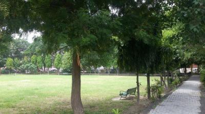 Parks Image of 4050 Sq.ft 10 BHK Villa for buy in Rajendra Nagar for 55000000