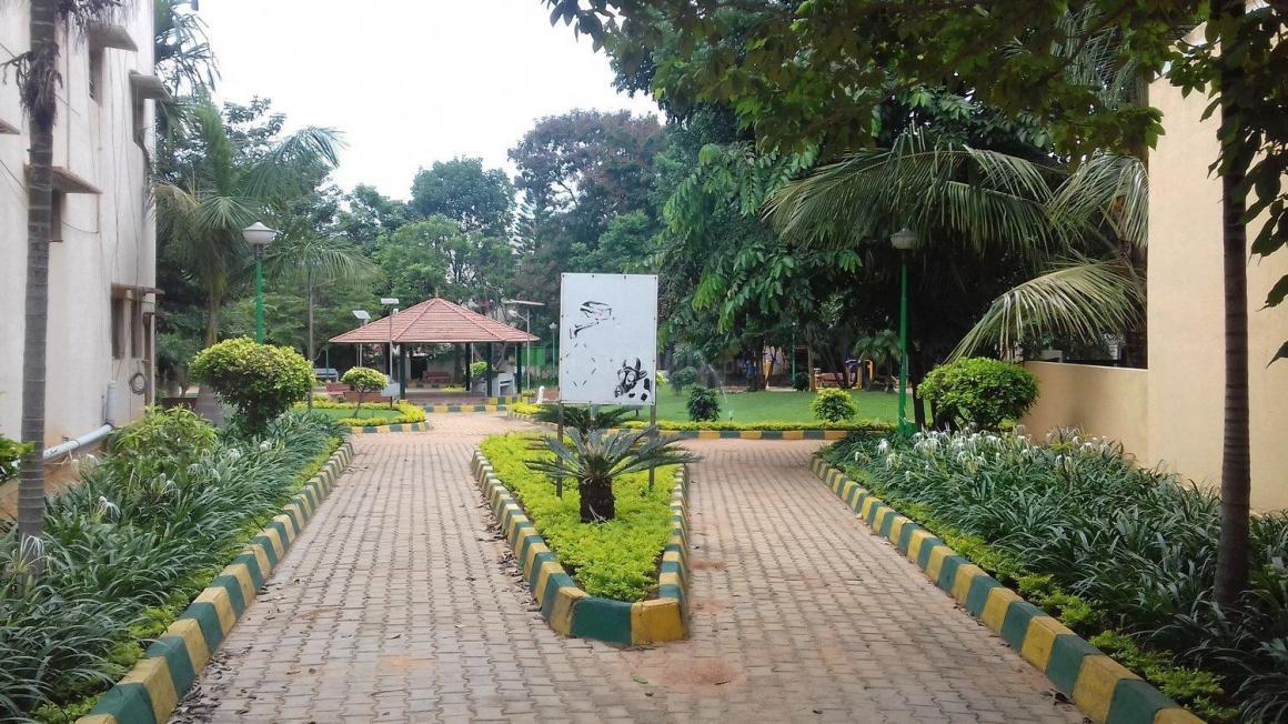 SFS Park