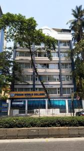 Schools & Universities Image of 2880 Sq.ft 4 BHK Apartment for rent in Juhu for 400000