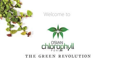 Osian Chlorophyll Brochure 22