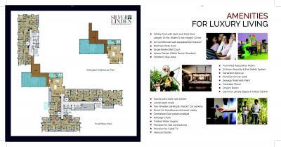 Malabar Silver Linden Brochure 11