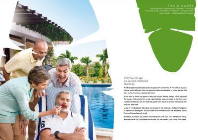Adani The Evergreen Brochure 9