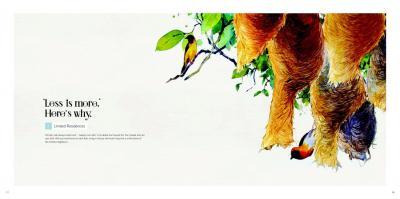 Tridhaatu Tridhaatu Aranya Brochure 12