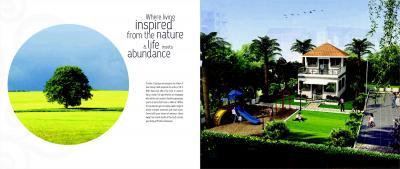 Pristine Classique Brochure 4