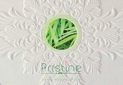 ATS Pristine Brochure 1