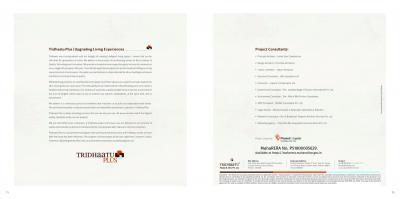 Tridhaatu Tridhaatu Aranya Brochure 39