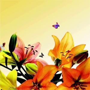 Divyansh Flora Brochure 7