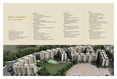 Veena Dynasty Brochure 13