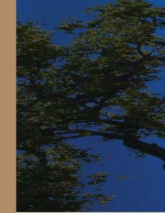 MSR Global Solutions Krishna Garden Brochure 1
