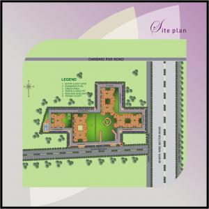Tulip Purple Brochure 15