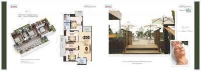 Aims Green Avenue Brochure 10