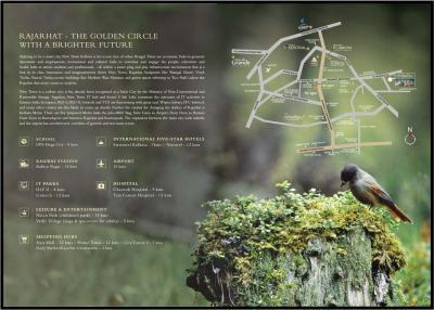 Mounthill The Rain Forest Brochure 17