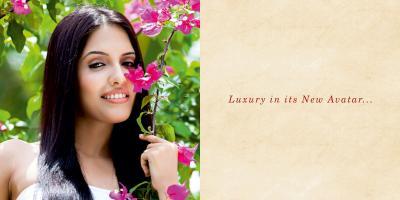MKS La Royale Brochure 2