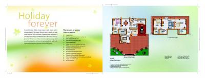 Hilite Springdale Brochure 8
