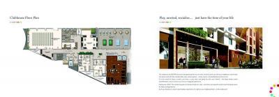 DSR RR Avenues Brochure 8