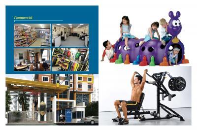 GM Meena Icon Brochure 10