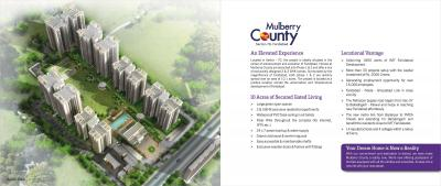 MGH Mulberry County Brochure 2