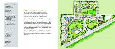 SS The Coralwood And Almeria Brochure 4