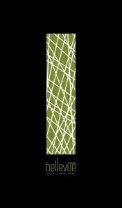 Krupa Shalin Bellevue Brochure 1
