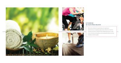 Kabra Centroid A Brochure 15